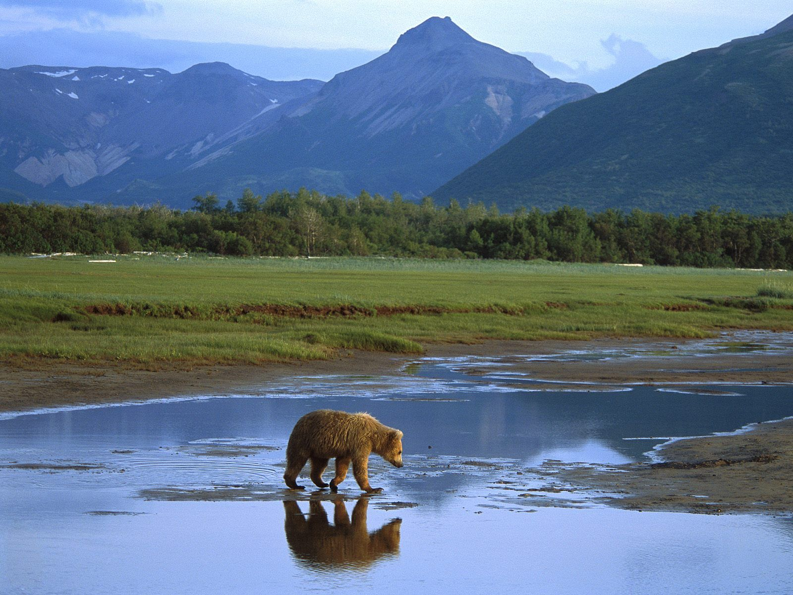 Visiting Alaska – A place of wonderful wilderness